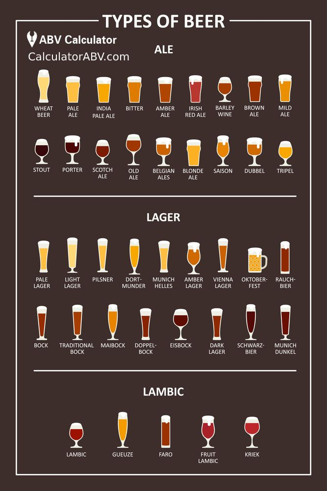 Types of Beer - Infographic